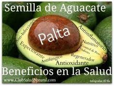 Beneficios de las Semillas de Sandía – Club Salud Natural