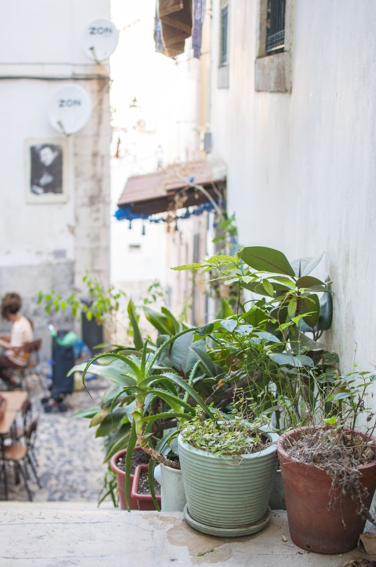 Lisbon Vegan Food Guide: The food temple