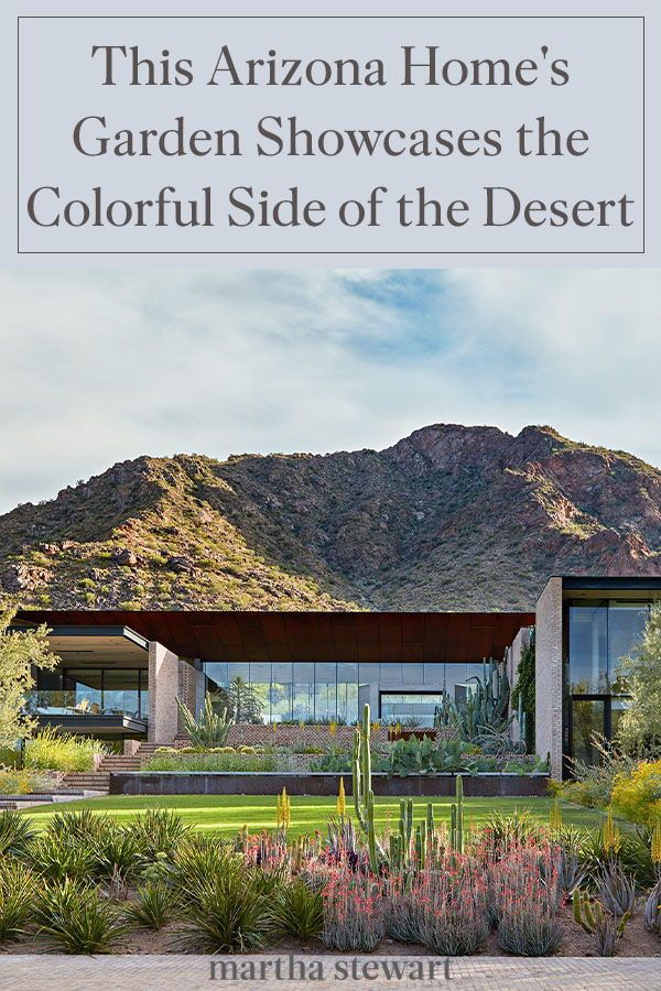 This Arizona Home S Garden Showcases The More Colorful Side Of The Desert In 2020 Arizona Wildflowers Garden Tours Garden Features