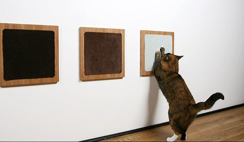 cat  This is very smart! Frames with nice scratching material. Although I'm sure Molly will still prefer the couch.
