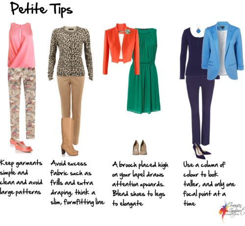 I fall in that in-between land.  I'm 5'4.  Not quite petite, not quite full size, but it is the average height of the American Woman - I do agree with most of the tips here even if I don't follow.  And I love the animal print cardigan!! Let's here it for animal prints. Petite tips