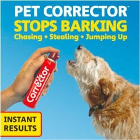 Compressed Air Stop Dog Barking