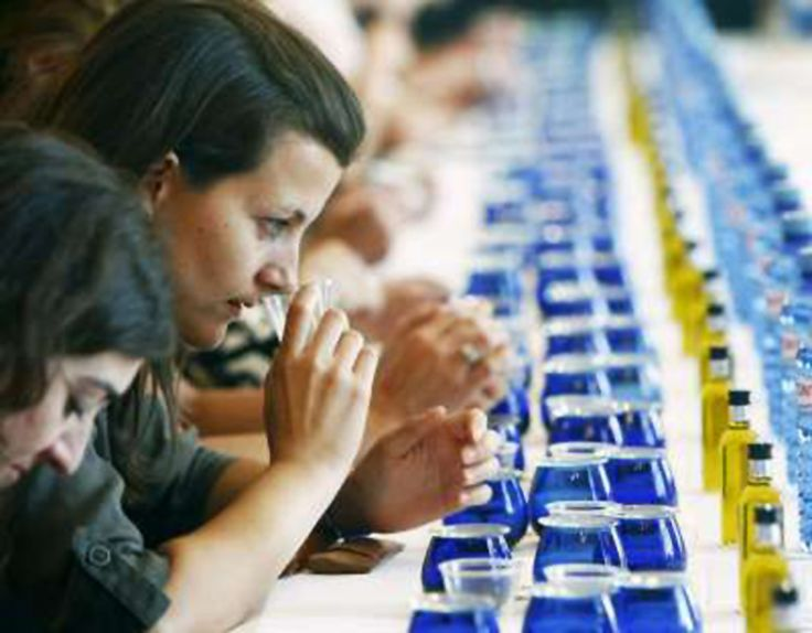 Citoliva organiza, desde hoy, el primer curso superintensivo en cata de aceite del país