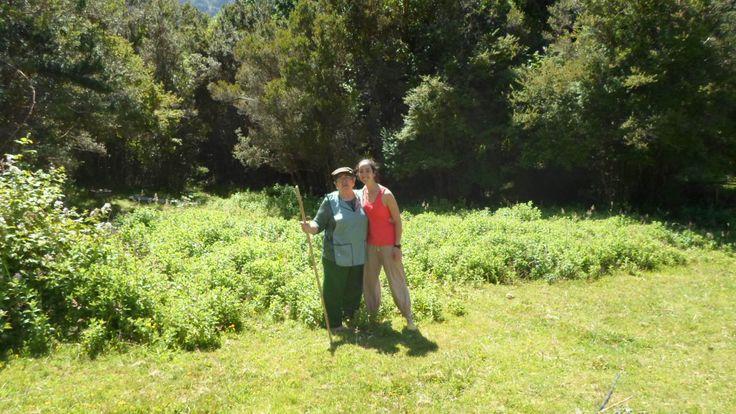 Forest garden with Otita