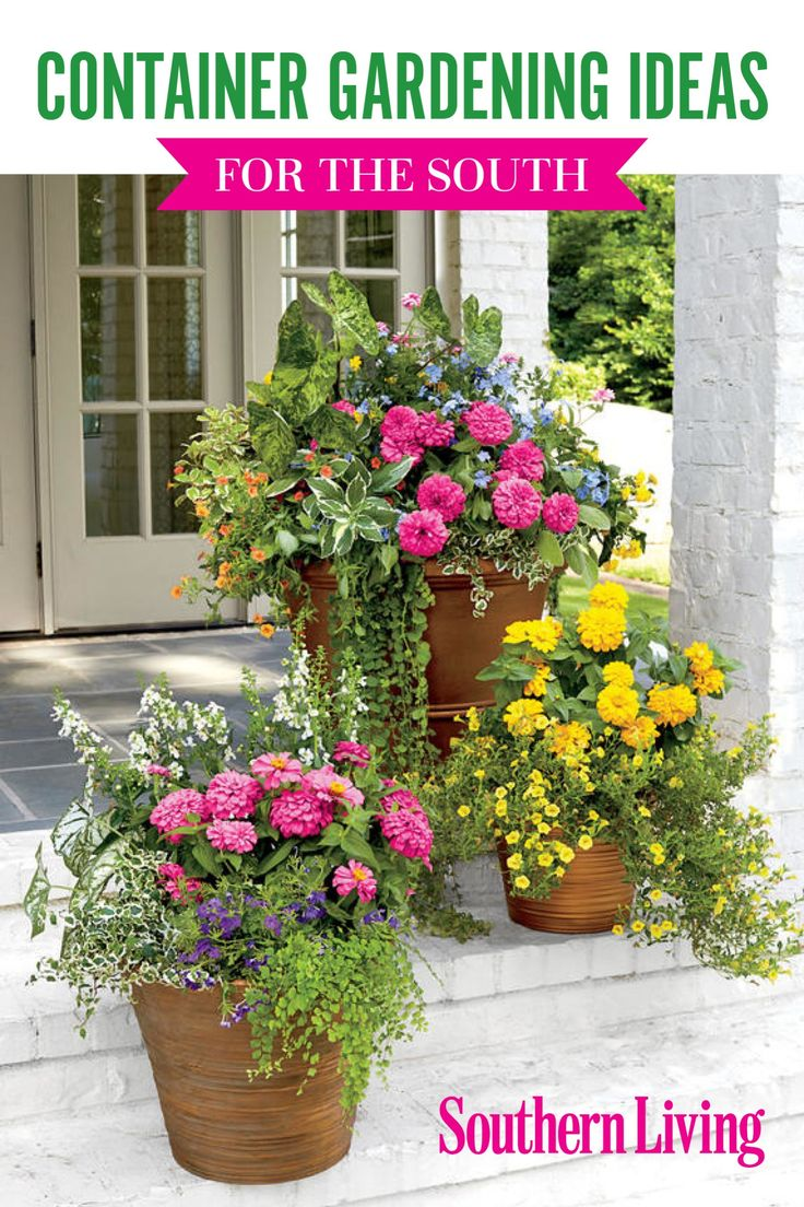 389 Best Container Gardens Images On Pinterest Gardening Flower Beds And Flowers Garden