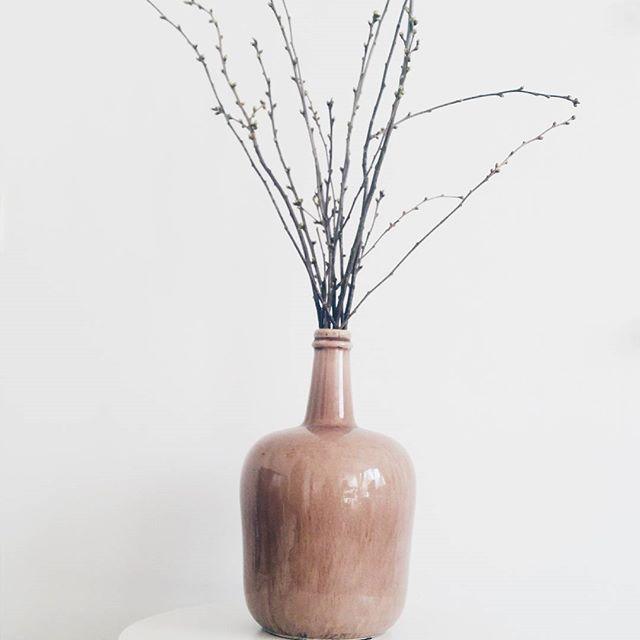 Deze (oud) roze vaas scoorde ik een paar weken in de sale. Met een bosje takken erin geeft het een mooi plaatje . Ben jij op zoek naar woonaccessoires met een klein prijsje? Check dan het kopje 'inspiratie' op onze website! X Char #interieurblogger #yourlittlehome #kleinwonen #woonaccessoires #budget #blogger #oudroze #inspiratie #deco #doorkijkje #littleapartment #styling #microliving