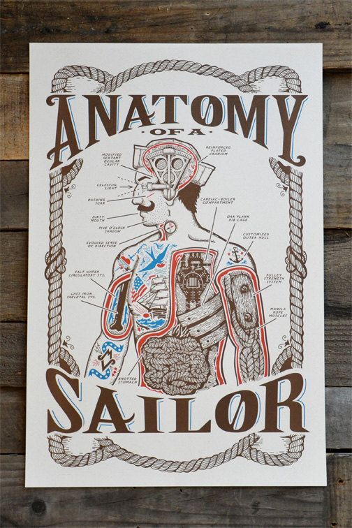 """Anatomy of a Sailor POSTER 12"""" x 18"""""""