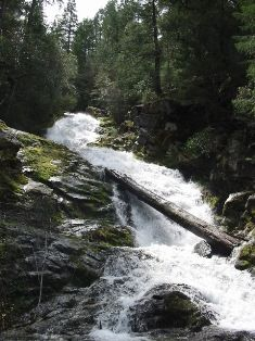 Whiskeytown Falls hikes in Whiskeytown, CA near Sacramento.  Can hike all 4 falls.  Best in fall or spring