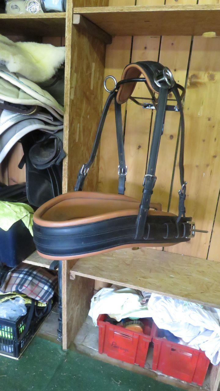 Bricole Cintree Cheval De Trait Cheval De Trait Cheval Bottes Equitation