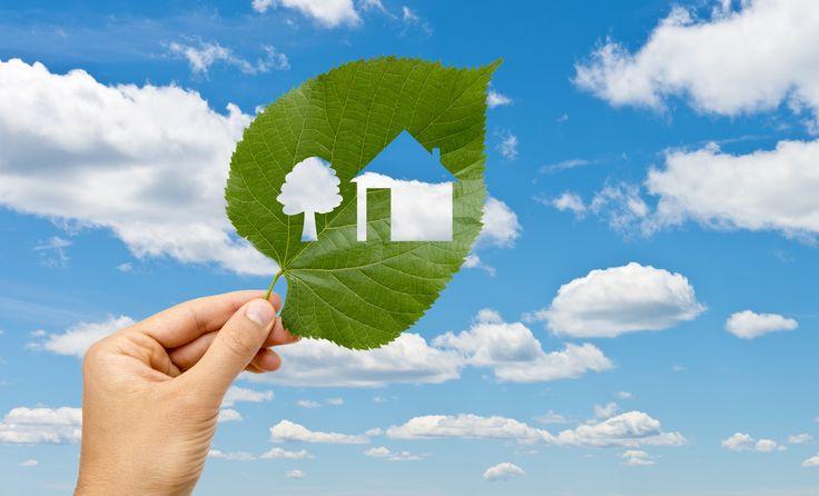 Bir kişi bile dünyayı değiştirebilir! Yemyeşil bir gelecek için #EnerjiTasarrufHaftası kutlu olsun! http://bit.ly/22UTYkG