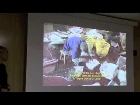 """LOS TIBURONES EN PELIGRO. Charla de Fernando Frias Reis, fundador y coordinador de la Alianza por los tiburones de Canarias, ofrecida en la Sala de Grado de la Facultad de Ciencias del Mar de la ULPGC, el 11-02-2014, dentro del III Ciclo de ciencia compartida, nº 20. Más información en el Blog de la Biblioteca de Ciencias Básicas """"Carlos Bas"""": http://bibwp.ulpgc.es/carlosbas/2014/02/09/tiburones-en-canarias-tiburones-en-peligro"""