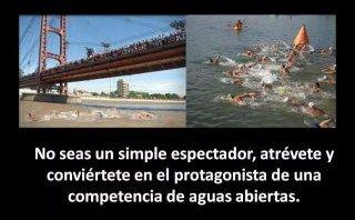 ¡5 imágenes imprescindibles para nadadores de aguas abiertas! - Open Water Basque