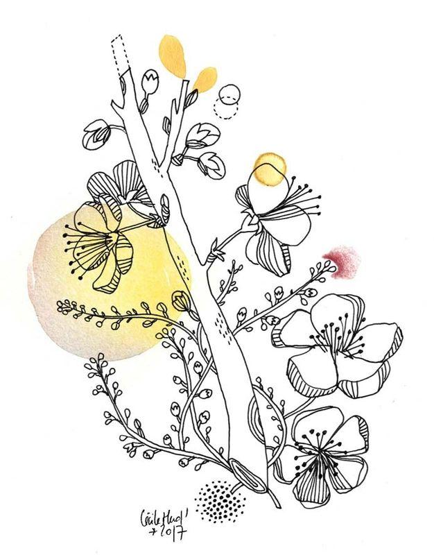 pruniers bourgeons, Cécile Hudrisier