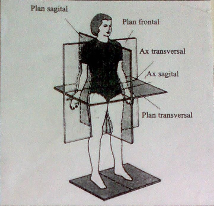Tratament squat pentru varice