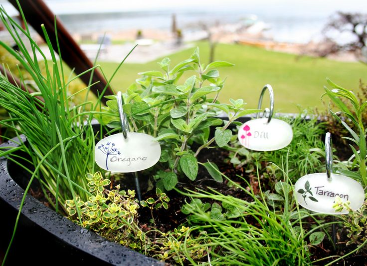 Label Your Favorite Herb, Plant Or Flower With Plant Tags // Www. Allsopgarden