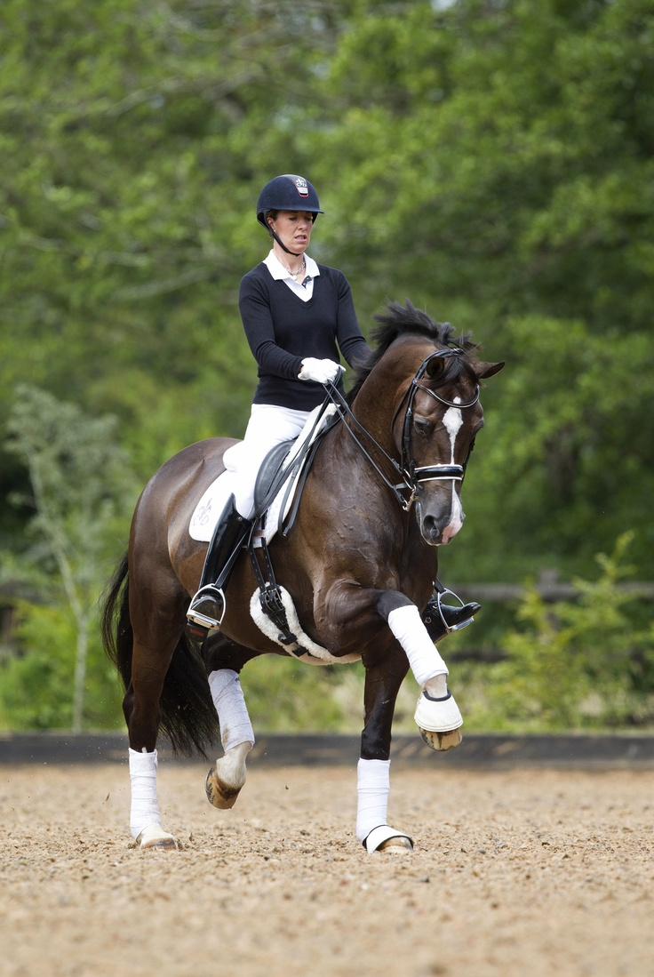 92 best charlotte dujardin images on pinterest dressage for Charlotte dujardin