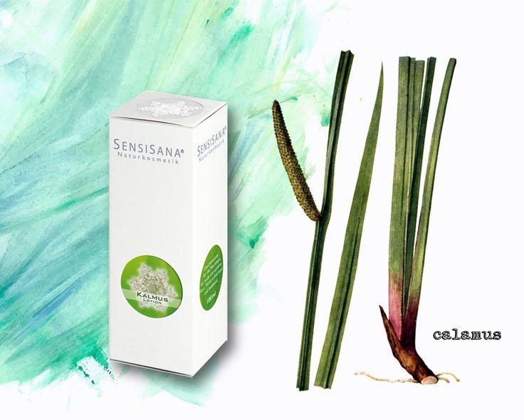 SensiSana línie Calamus pre zmiešanú a unavenú pleť, nemecká bio-kozmetika, prírodná a organická kozmetika, www.plumeria.sk