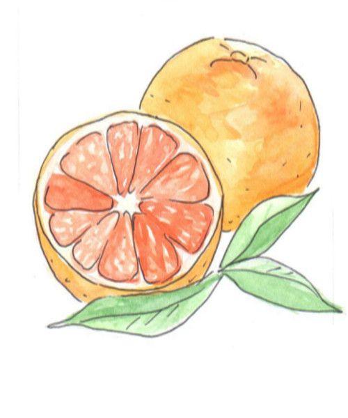 Эфирное масло Грейпфрут Эфирное масло грейпфрута улучшает работу печени и желчного пузыря, полезно при расстройствах пищеварения Оно стимулирует лимфатическую систему и способствует выведению токсинов. Снижает вес, нормализует жировой обмен, снижает уровень холестерина в крови и притупляет чувство голода. Обладает свойством снимать мышечные спазмы.