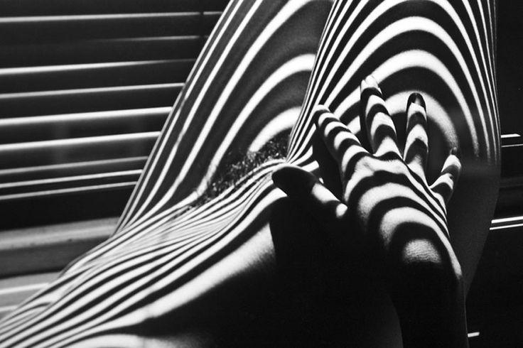 Desnudos Zebras - Lucien Clergue ~ El Blog del Dolape