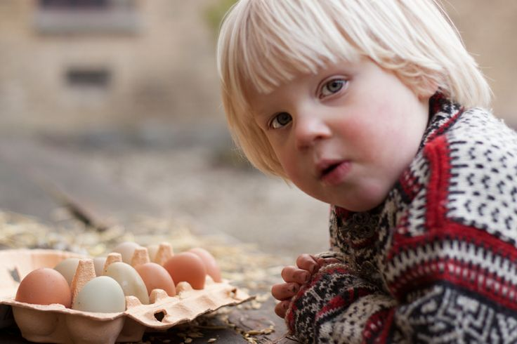 Barn kigger på æg. Child with eggs.