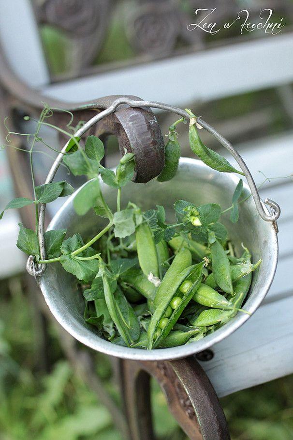 Groszek zielony green peas