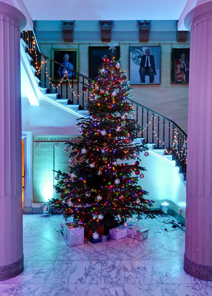 Beautiful tree in our spiral staircase