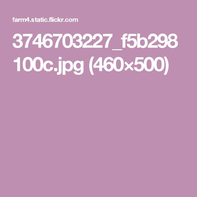 3746703227_f5b298100c.jpg (460×500)