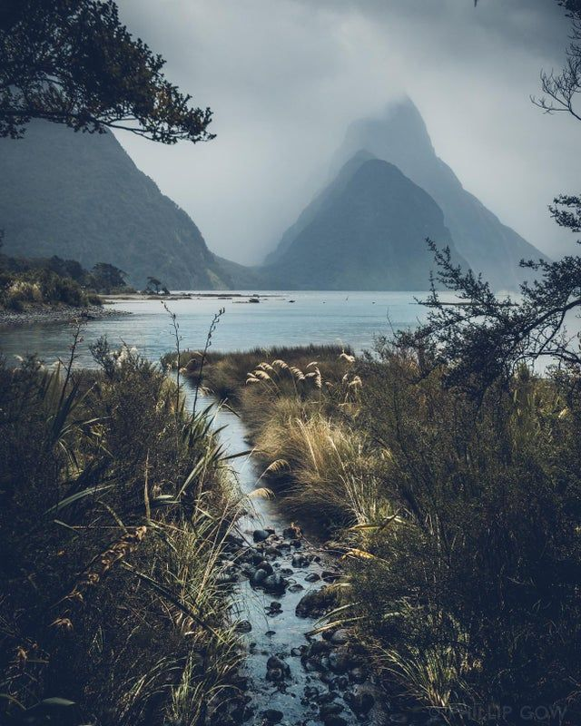 The Worse The Weather The Better This Place Looks A Moody Day At Milford Sound New Zealand Oc 1294 16 In 2020 Mountain Landscape Landscape Landscape Photography