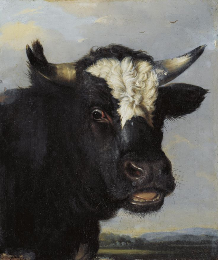 Manner of Paulus Pietersz Potter. (Dutch, 1625-1654) Head of a Bull. Oil on canvas, 59,7 x 49,5 cm.