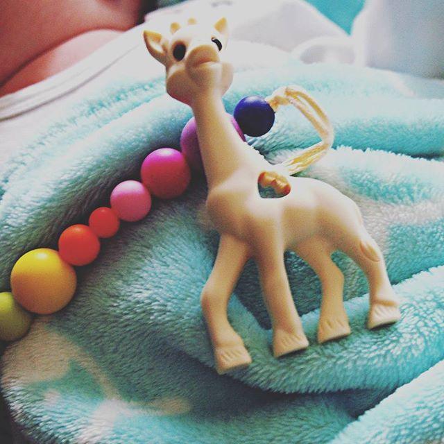 Gryzaki i gryzaczki zaczynają być u nas bardzo pożądane ☺😂 #littleefant #zyrafkasophie #gryzak #dlaniemowlaka #dladzidziusia #forbaby #kocyk #baby #instababy #mybaby #mlodszy #myson #parenting #parenthood #justbaby