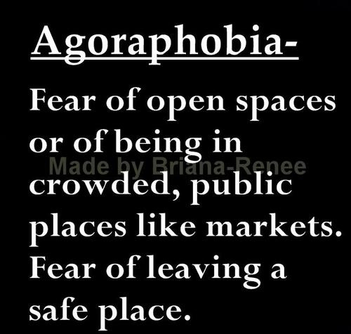a description of the meaning and types of phobias Types of phobia there are a wide variety of objects or situations that someone could develop a phobia about however, phobias can be divided into two main categories.