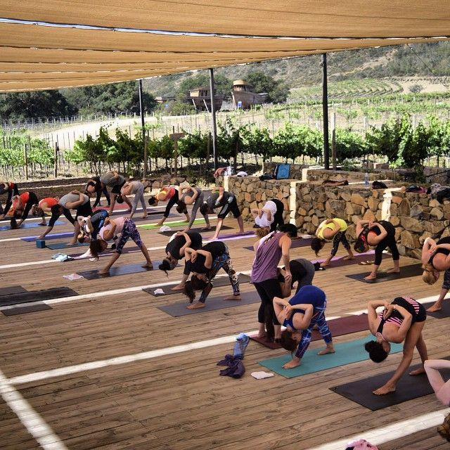 Apart from all the physical benefits, yoga can help a person improve their mental well-being. Yogis stay on the look out for yoga retreats in #Ensenada's Wine Country.  Yoga retreat picture shared by Ana Corella, taken at Cuatro Cuatros
