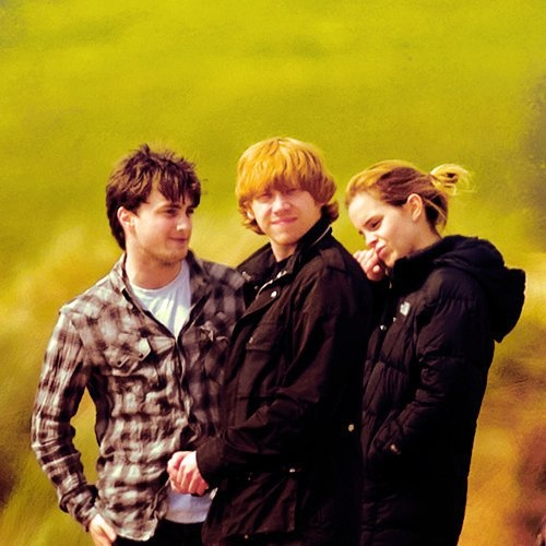 Harry, Ron, and Hermione