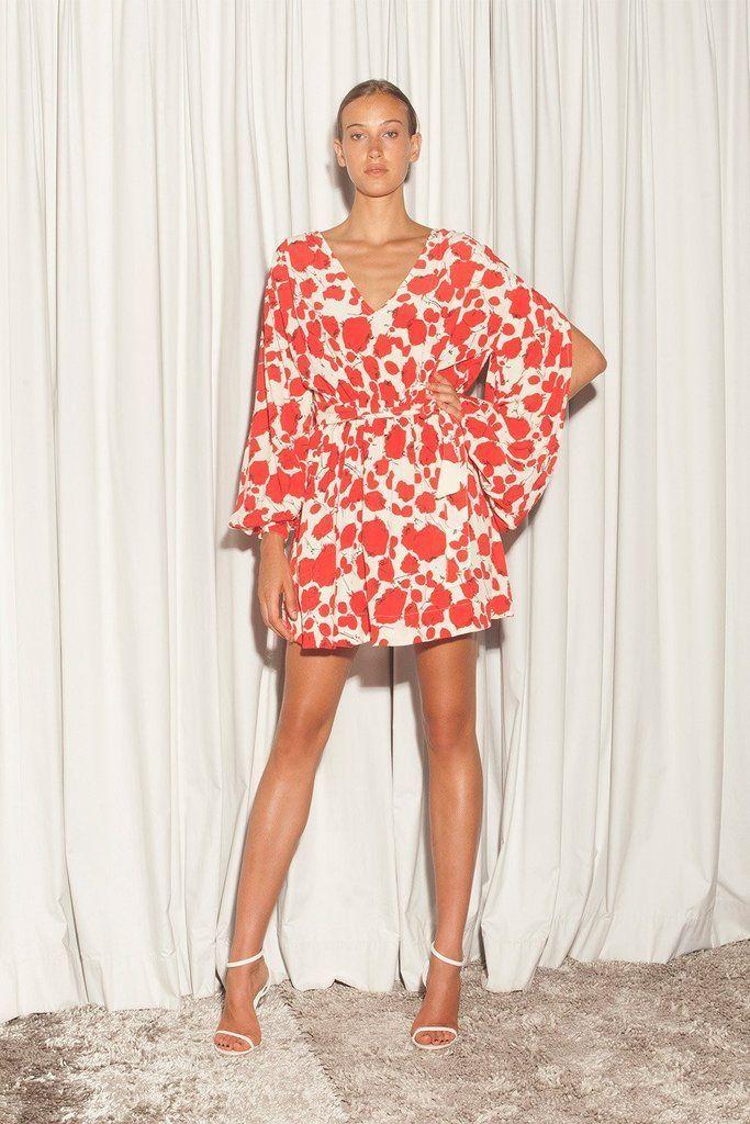 S/W/F - Arabella Dress - Rose Print