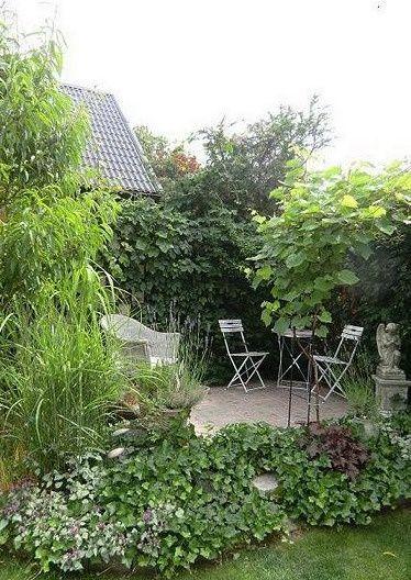 An Artist's Garden: Mediterranean-style garden