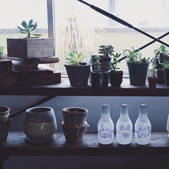 NOMAMA(ノママ)は自然食品やハーブなどの成分を混ぜあわせた無添加レシピのスキンケアブランドです。酸化を防ぐ真空ボトルを採用し、使いきりでいつでも新鮮。シンプルな化粧水+クリームの2ステップケアで、毎日、通年で使えます。