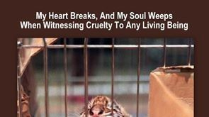 Petition · Animal organizations to ask Interpol and the FBI to find the monsters who torture animals and post them in Youtube: Should WAP, PETA, HSI, SPCA, and other animal organizations · Change.org