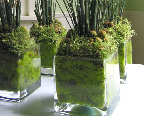 Nice base! Smaller container nestled in larger one, then space filled with moss.