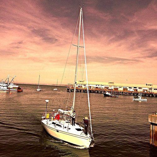 """""""Sailboat Motors in to Monterey"""" #sailboat, #monterey, #california, #harbor, #marina, #калифорния,#парусноесудно, #гавань, #марина, #монтерей, #paulewing, #zvuchno"""