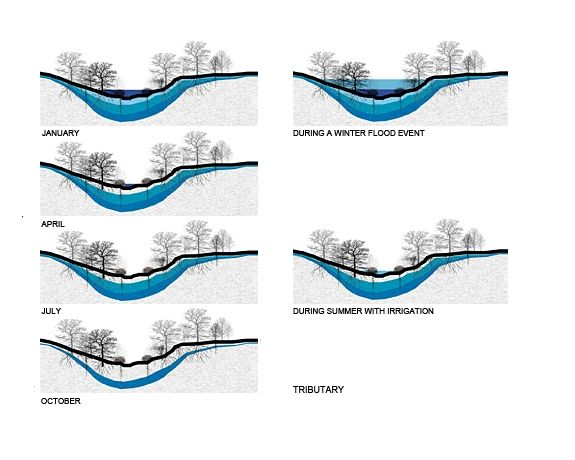 Landscape Architecture Section Drawings 119 best [landscape] sections images on pinterest | landscape