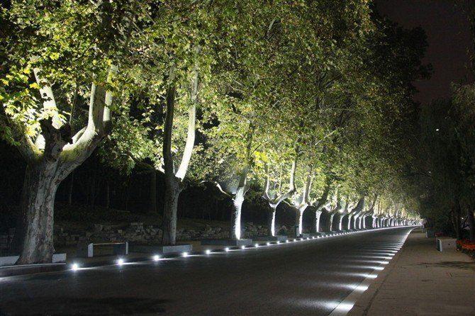 Eye Catching Backyard Landscape Lighting Ideas Landscapelightingdesign In 2020 Led Landscape Lighting Driveway Lighting Outdoor Landscape Lighting