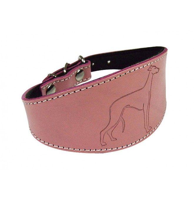 Collar para Whippet pequeño color Rosa