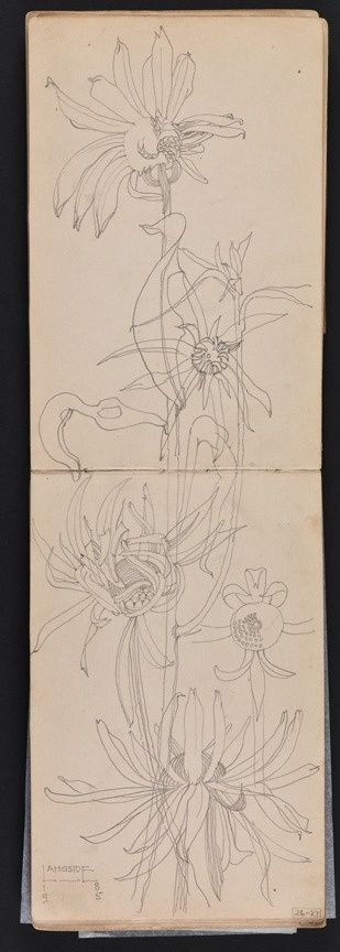charles rennie mackintosh, travel sketchbook,1895.