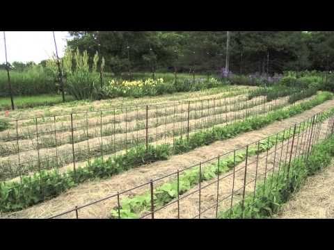 Deep Mulch Gardening , 114 Best Agro Jardin Images On Pinterest