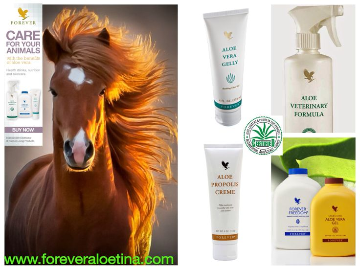 Aloe vera has just as many benefits for horses as humans. The Aloe stick deodorant is great for keeping the flies away, when applied around the horse's eyes. Find out more here... http://www.foreveraloekay.co.uk/