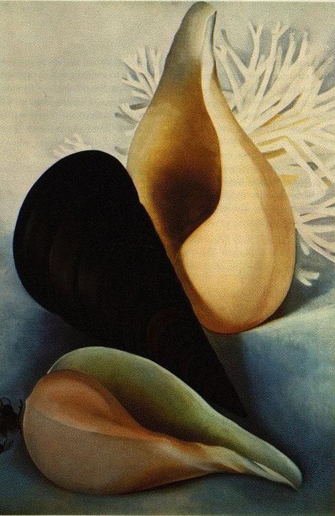 Georgia O'Keeffe + a link to a O'Keeffe/ shell lesson plan http://www.juneauschools.org/uploads/elementaryart/Fourthgrade/lessonplans/shellsWithGeorgiaOKeeffelesplan.pdf