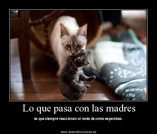 Frases para Personas Egoistas   Lo que pasa con las madres (FOTO) - Imagenes con Frases - De Moda En ...