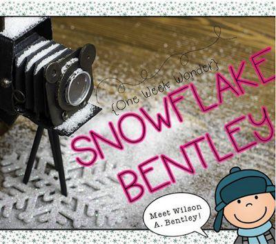 Snowflake Bentley: One Week Wonder | One Extra Degree | Bloglovin'