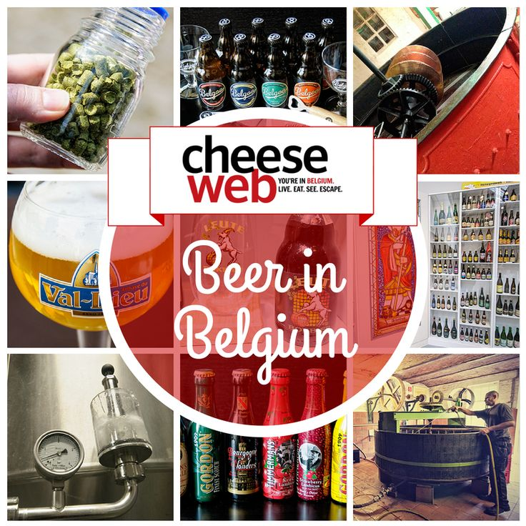 The Ghent Bar and Beer Guide A beer tourists guide to the best bars breweries and bottle shops in Ghent
