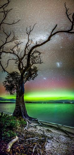 Aurora Australis - Mortimer Bay by Brendan Davey   Flickr - Photo Sharing!